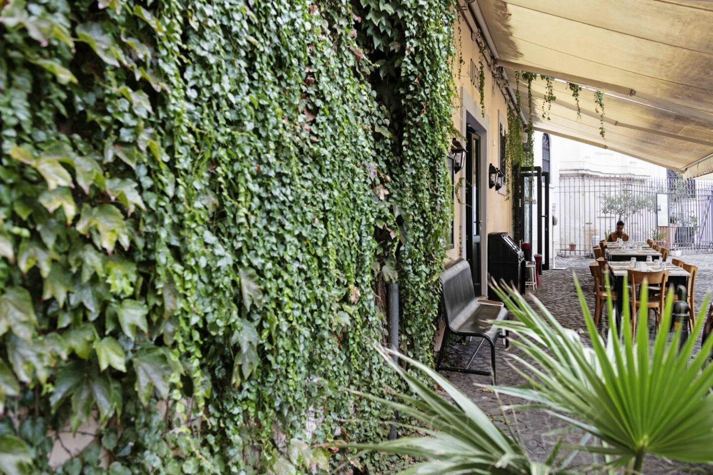 dehors ristorante con edera verde sul muro e tavoli di legno