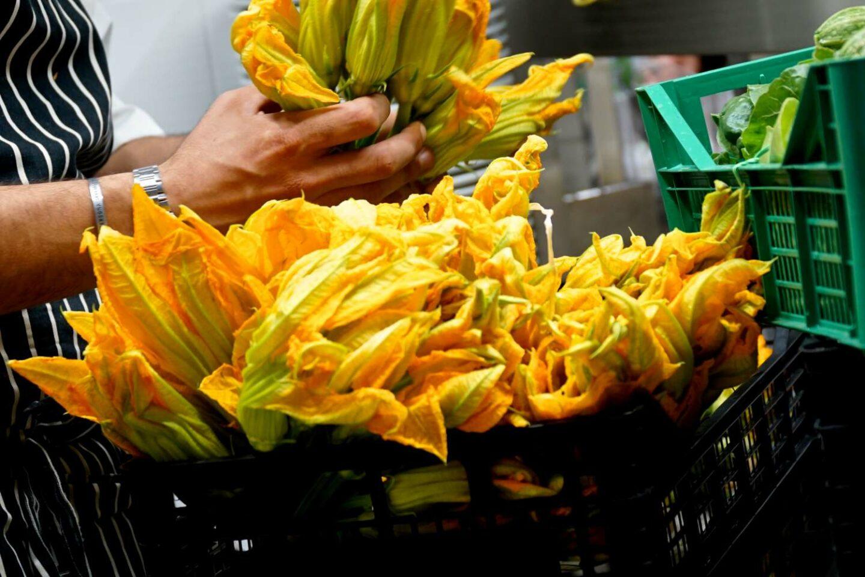 chef sistema fiori di zucca